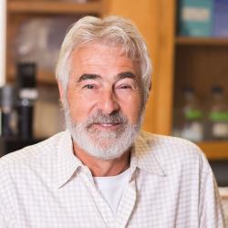 Stephen Giovannoni sitting in lab